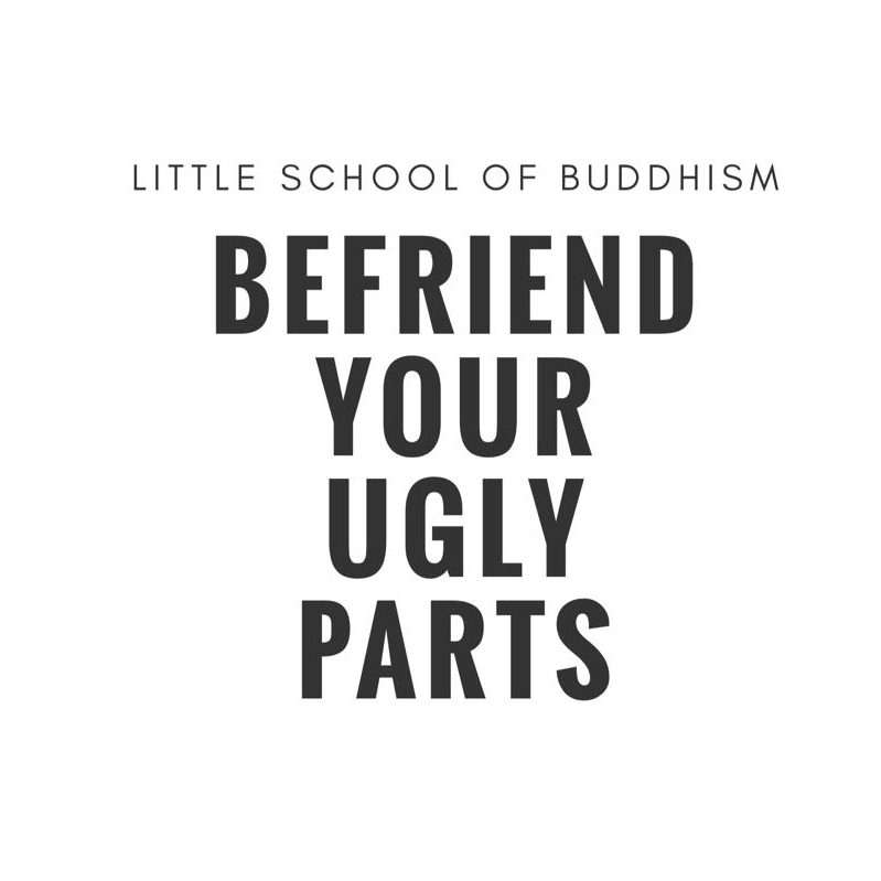 LSOB - Befriend Your Ugly Parts - meditation